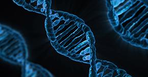遺伝子レベルで人を見分ける?